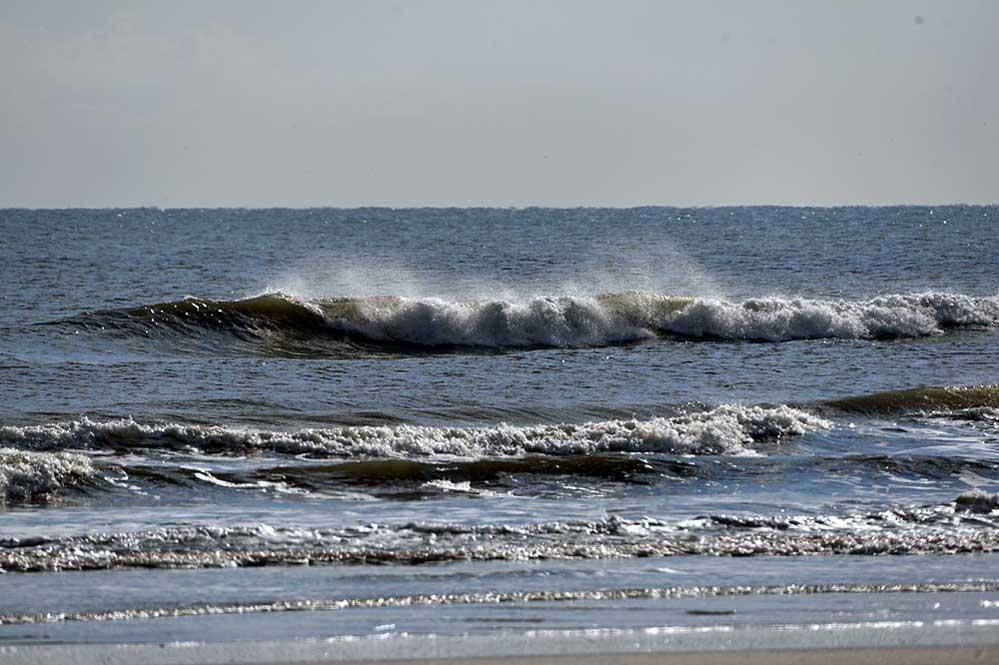 Vilano matanzas 01 05 surf fishing florida surf fishing for Surf fishing florida